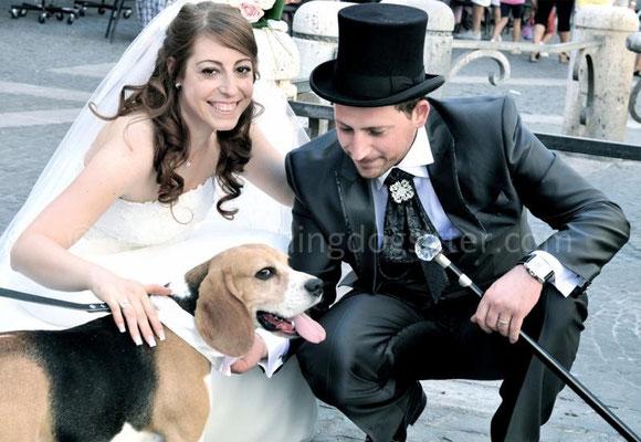MATRIMONIO WEDDING DOG SITTER ROMA CASTELLI ROMANI TENUTA CUSMANO