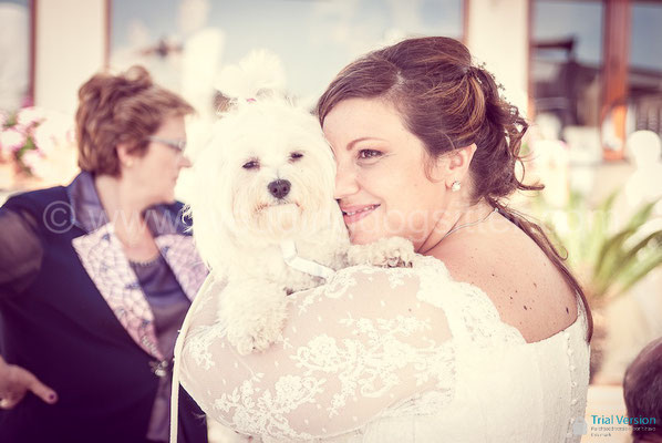 CANE AL MATRIMONIO A NAPOLI WEDDING DOG VILLA CLERMONT