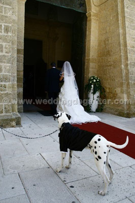 MATRIMONIO WEDDING DOG SITTER PUGLIA