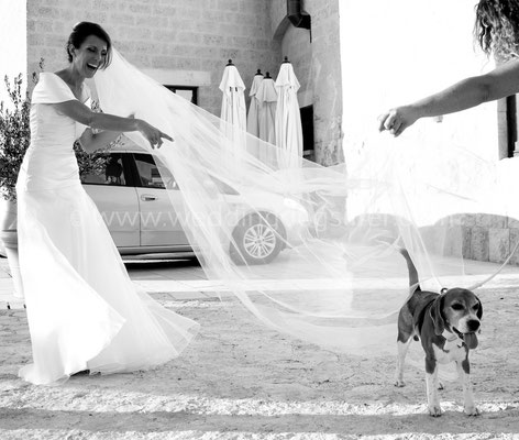 WEDDING DOG SITTER PUGLIA