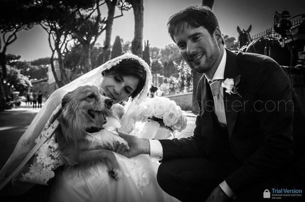 SPOSA CON IL SUO CANE AL MATRIMONIO A ROMA