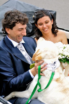 MATRIMONIO WEDDING DOG SITTER ROMA - CIVITAVECCHIA VILLA CERI