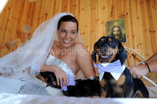 FOTO NON IN POSA CON CANI MATRIMONIO A I DUE CIGNI