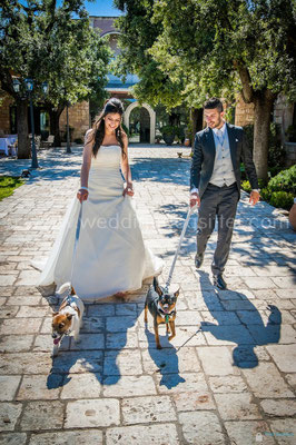 COPPIA SPOSI CON I CANI AL MATRIMONIO WEDDING DOG SITTER