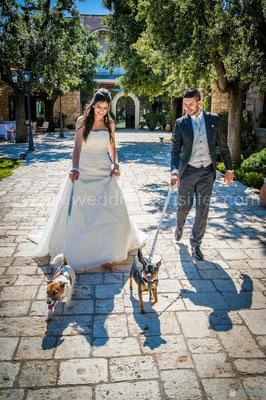 COPPIA SPOSI CON I CANI AL MATRIMONIO WEDDING DOG SITTER