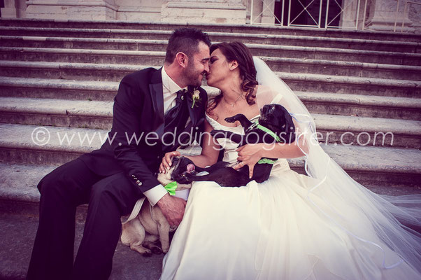 WEDDING DOGSITTER VARESE