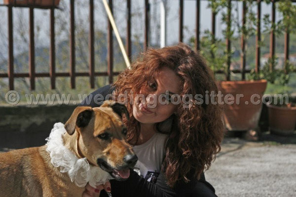 MATRIMONIO WEDDING DOG SITTER SALERNO