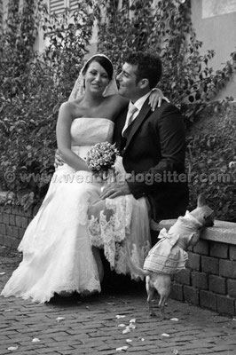 MATRIMONIO WEDDING DOG SITTER  FROSINONE ROMA