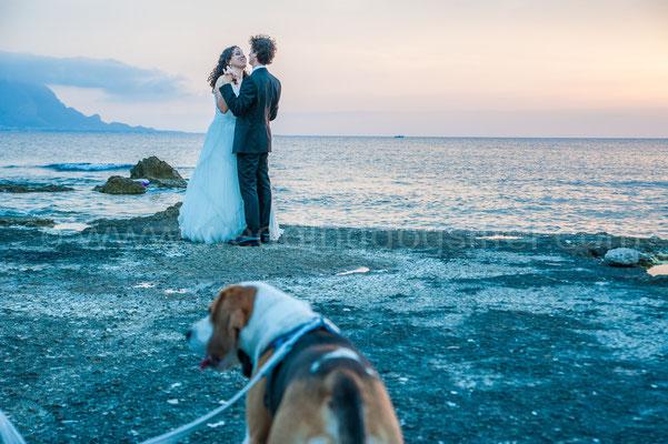 Matrimonio con dog sitter per il cane