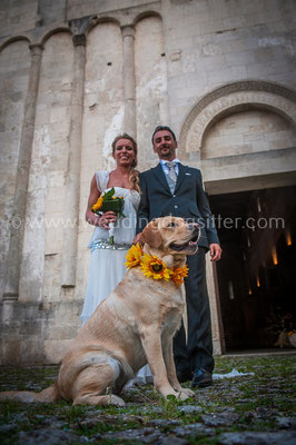 SPOSI CON IL CANE PESCARA WEDDING DOG SITTER