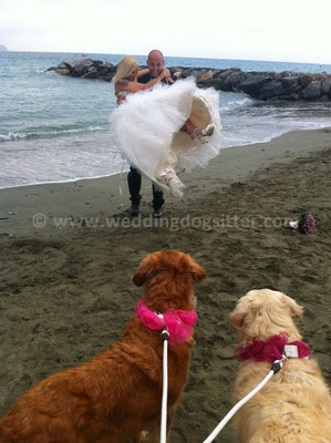MATRIMONIO WEDDING DOG SITTER LIGURIA MONTEROSSO CINQUE TERRE