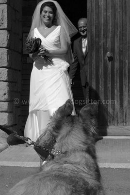MATRIMONIO WEDDING DOG SITTER TOSCANA FIRENZE - GROSSETO