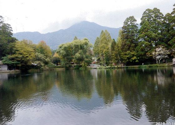 とらさん  由布院の金鱗湖
