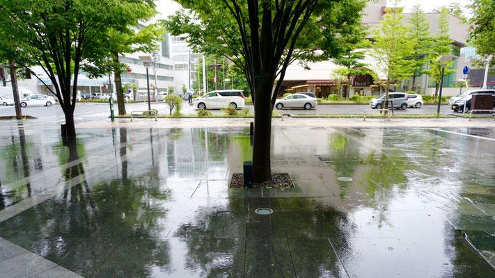 JUN 雨の歩道