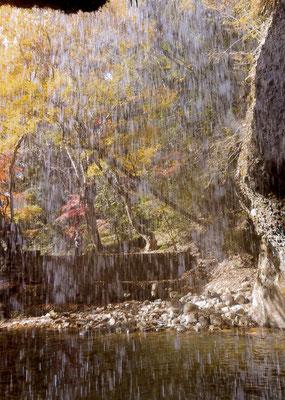 とらさん 月待の滝の裏