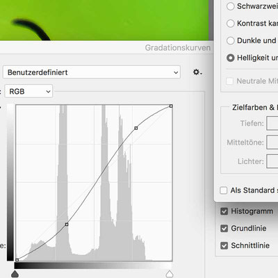 Screenshot Gradationskurve Photoshop, Photoshop Schulungen in Bielefeld  #Workshop Photoshop