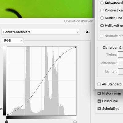 Screenshot Gradationskurve Photoshop, Photoshop Schulungen in Bielefeld  #Workshop Photoshop