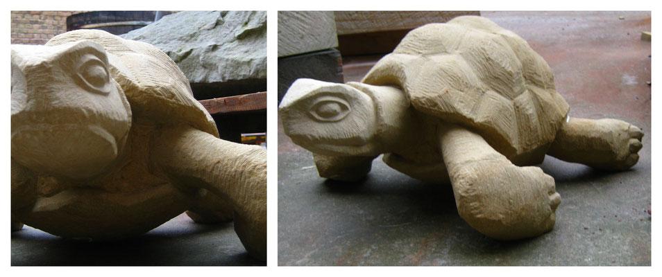 Schildkröte in Sandstein