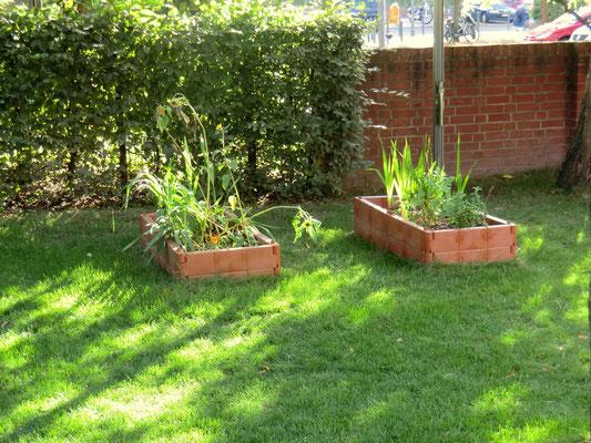 Unsere 2 Pflanzenbeete. Hier können die Kinder gemeinsam mit ihren Erzieherinnen Gemüse oder Kräuter anbauen.