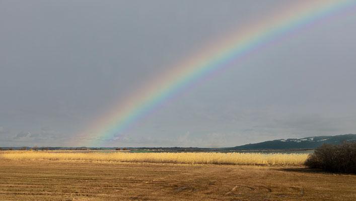 Reinhard Büchele - Regenbogen