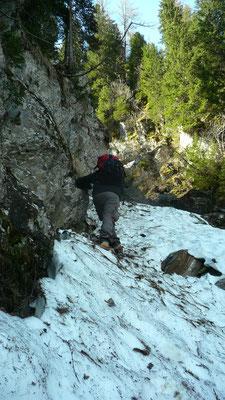 Suche im Schnee und Gestrüpp, Val Bedretto, TI