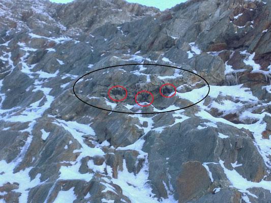 Der Felszug enthält viele Bänder und Hohlräume - und leider auch zu viel Calcit