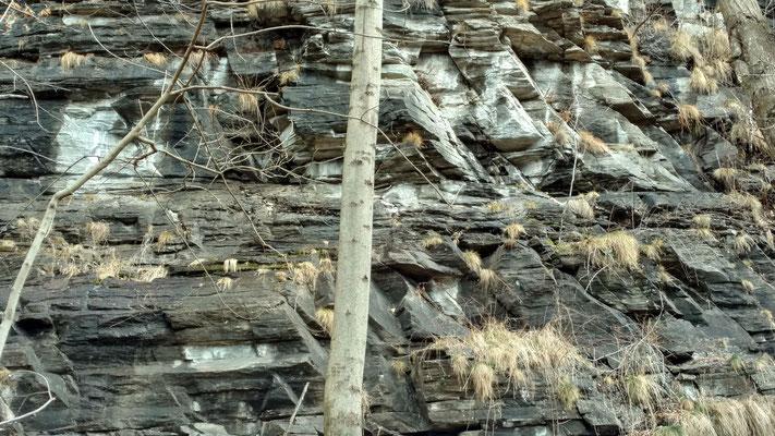 In den Felswänden sind einige richtig orientierte Quarzbänder zu erkennen.