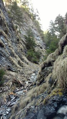 Die zweite Tour führte in steile Bündnerschieferrunsen
