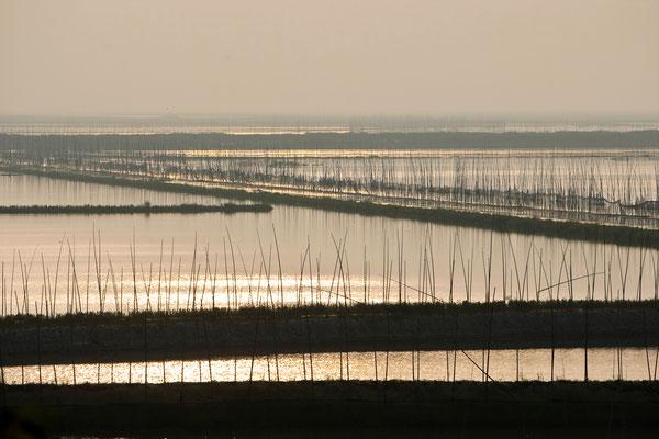 Fischerei in China - Reportage für BILD - © Dirk Brzoska