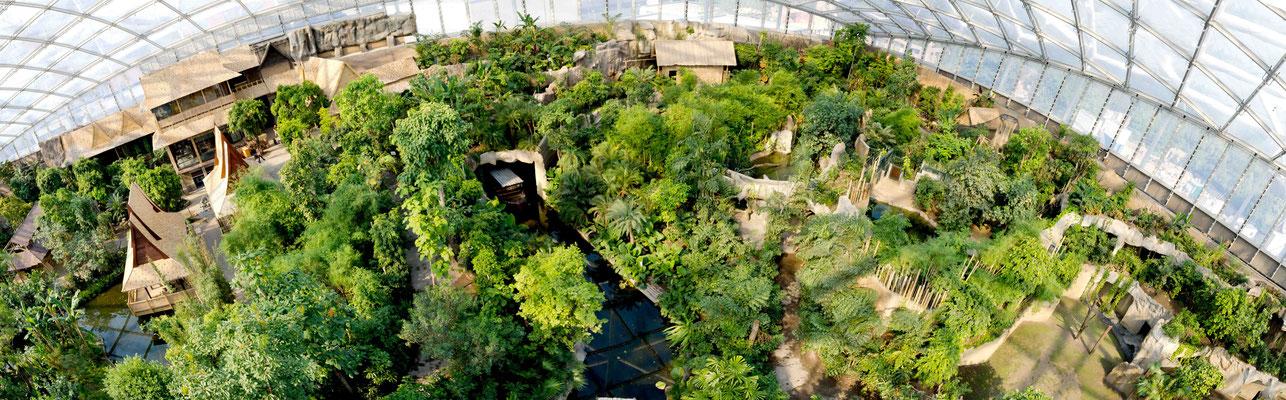 Gondwanaland im Zoo Leipzig - Fotoaufnahme mit Drohne für BILD Sonderausgabe - © Dirk Brzoska