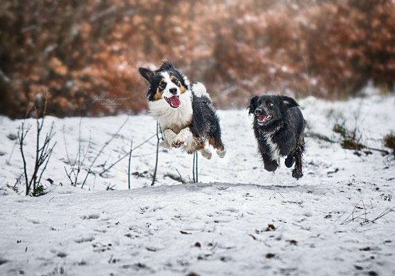 Henry&Susi, Februar 2018