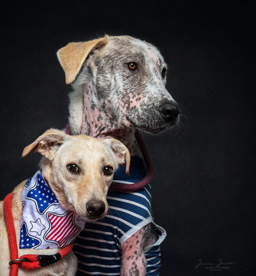 Luciano & Sarabi haben zusammen ihr Zuhause gefunden und sind am 11.07.2020 ausgezogen.