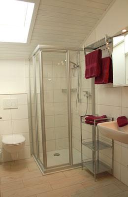neu renoviertes Bad mit Dusche/WC