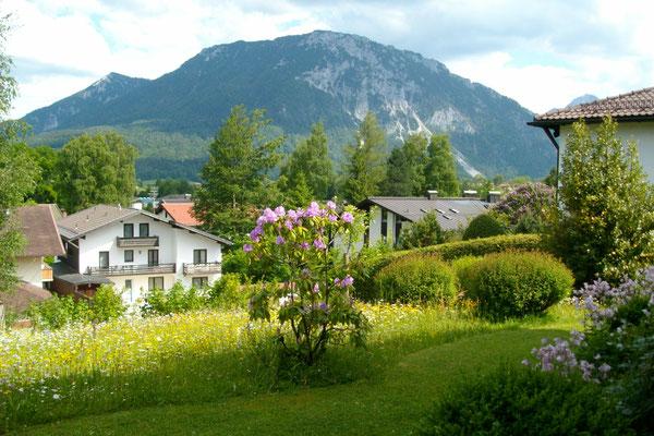 Aussicht Wohnung Rauschberg