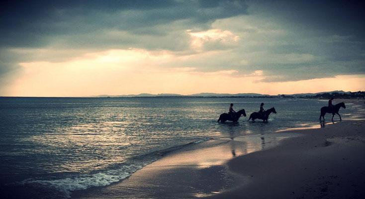 Tanzreisen für Tango Argentino | Winter-Tangoreise in den Orient | Strand und Meer | TangoMio Tangoreisen | copyright NOSOLOTANGO Travel