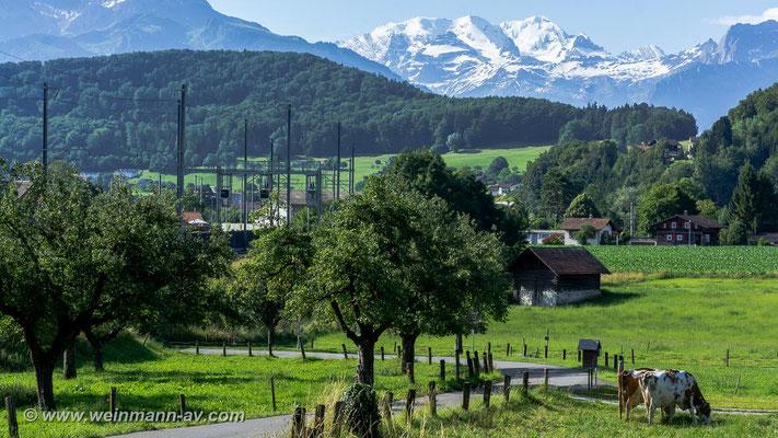 Landschaft bei Spiez (Kanton Bern, Schweiz)