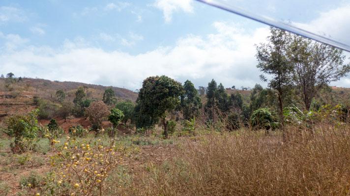 An den Wochenenden besuchten wir die Dörfer in der Umgebung