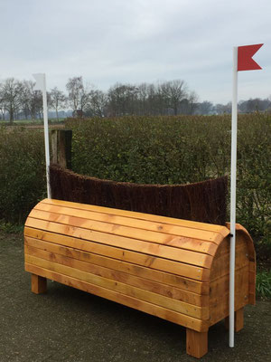 eventing Cross-country hindernis gelände sprong fence crosshindernis cross paard jump obstacle horse paard pferd pony hindernisse brush borstel