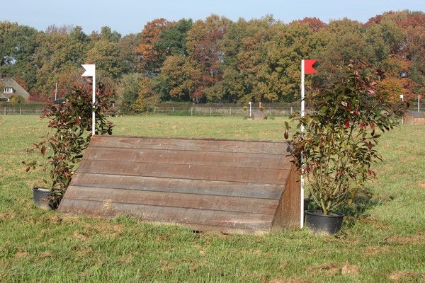 eventing Cross-country hindernis gelände sprong fence crosshindernis cross paard jump obstacle horse paard pferd pony hindernisse
