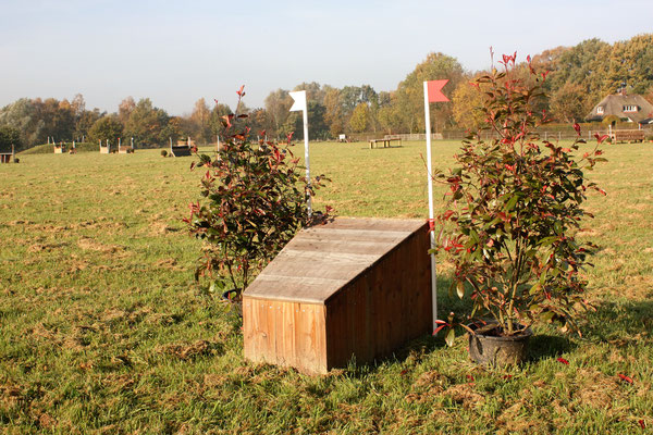 eventing Cross-country hindernis gelände sprong fence crosshindernis cross paard jump obstacle horse paard pferd pony hindernisse arrowhead small smal smalletje narrow