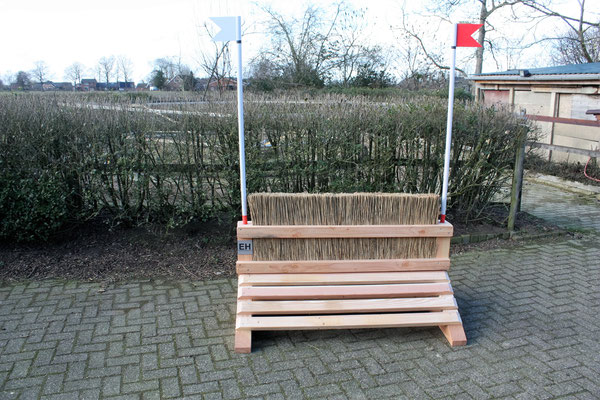 eventing Cross-country hindernis gelände sprong fence crosshindernis cross paard jump obstacle horse paard pferd pony hindernisse borstel riet brush smalletje narrow