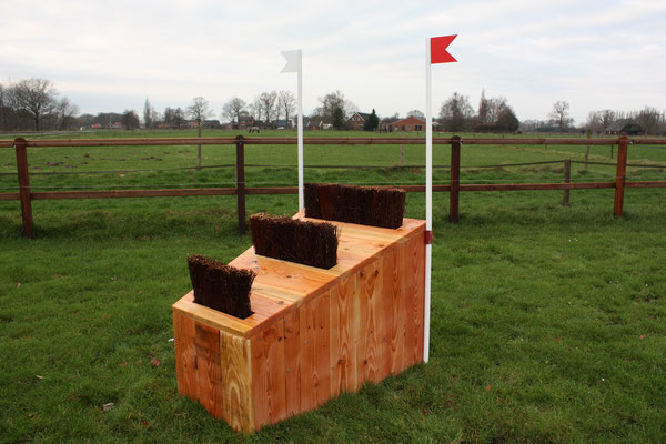 eventing Cross-country hindernis gelände sprong fence crosshindernis cross paard jump obstacle horse paard pferd pony hindernisse narrow arrowhead borstel brush berkenbezems smalletjes smal small