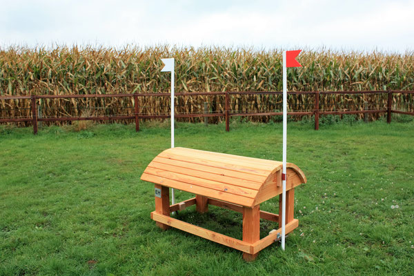 eventing Cross-country hindernis gelände sprong fence crosshindernis cross paard jump obstacle horse paard pferd pony hindernisse smalletje narrow