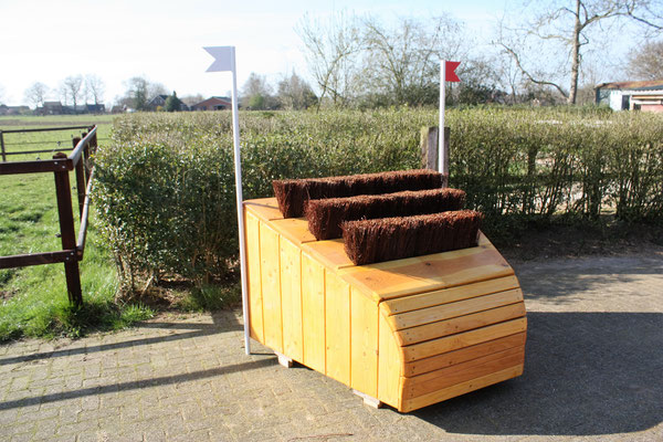 eventing Cross-country hindernis gelände sprong fence crosshindernis cross paard jump obstacle horse paard pferd pony hindernisse arrowhead small smalletje narrow brush borstel berkenbezems