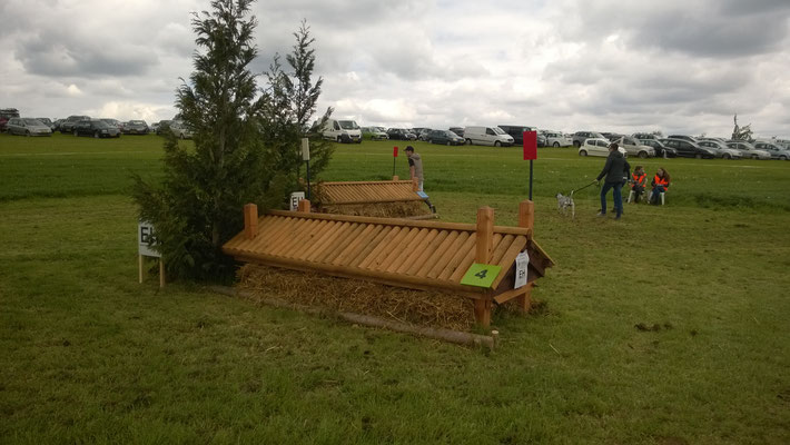 eventing Cross-country hindernis gelände sprong fence crosshindernis cross paard jump obstacle horse paard pferd pony hindernisse dankje roof