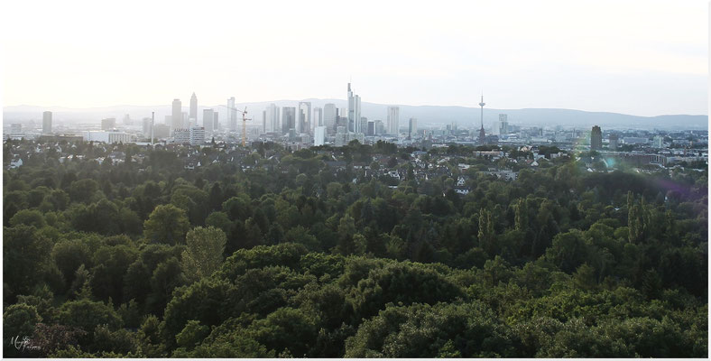 Skyline Frankfurt view from Goetheturm Goethe Tower by Mary Kwizness