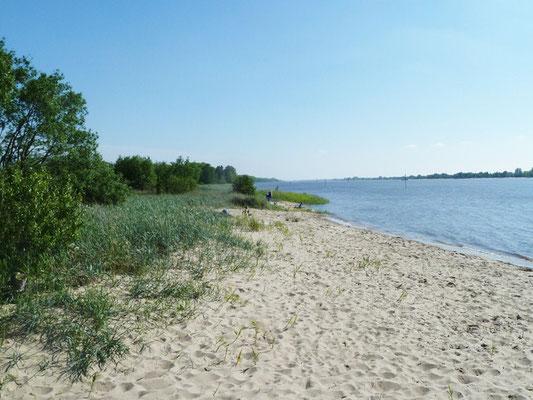 Strand auf Harriersand an der Weser