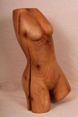 Cherry Baby (2010), Kirschbaum, ca.65cm