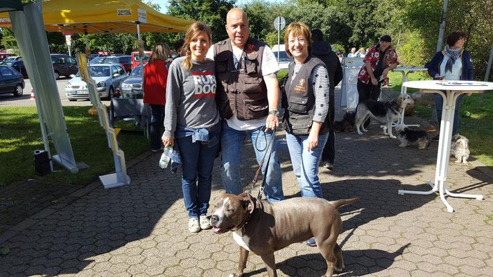 Pumbas Rudel mit Simone