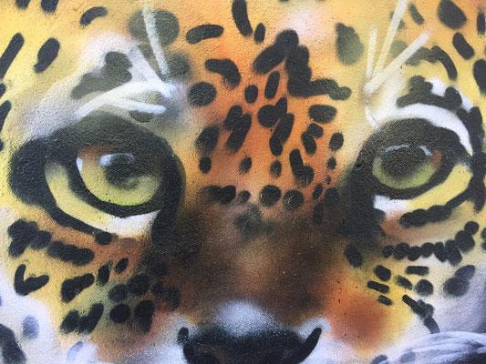 Detail of Jaguar at Fox & Firkin Pub, Lewisham, London, 2019
